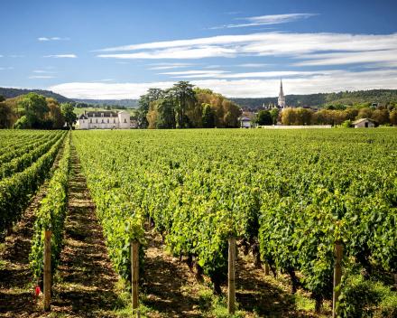 Bourgogne Frankrijk Motorreizen