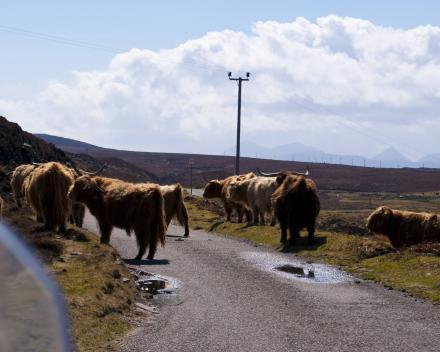 Motorreizen Schotland