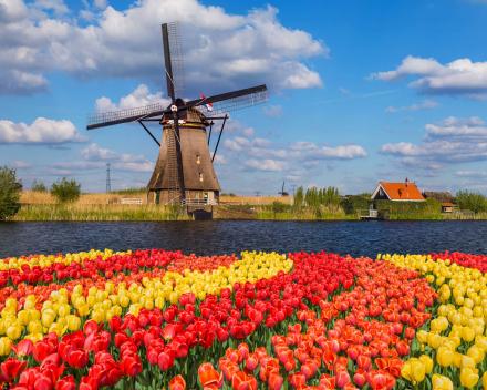 Motorritten Nederland