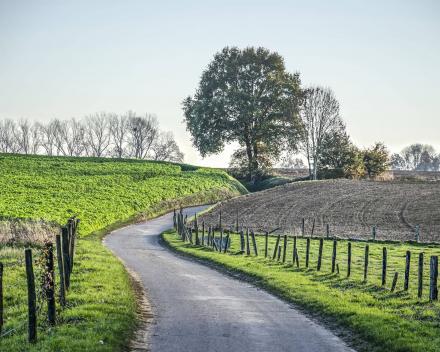 Motorroute Nederland België