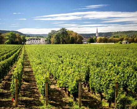 Bourgondisch Bourgogne