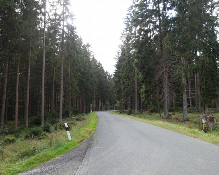 Thuringer Woud Motorrijden Duitsland