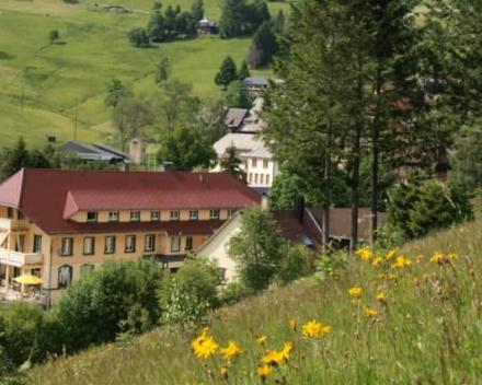 Vital Hotel Grüner Baum in Muggenbrunn