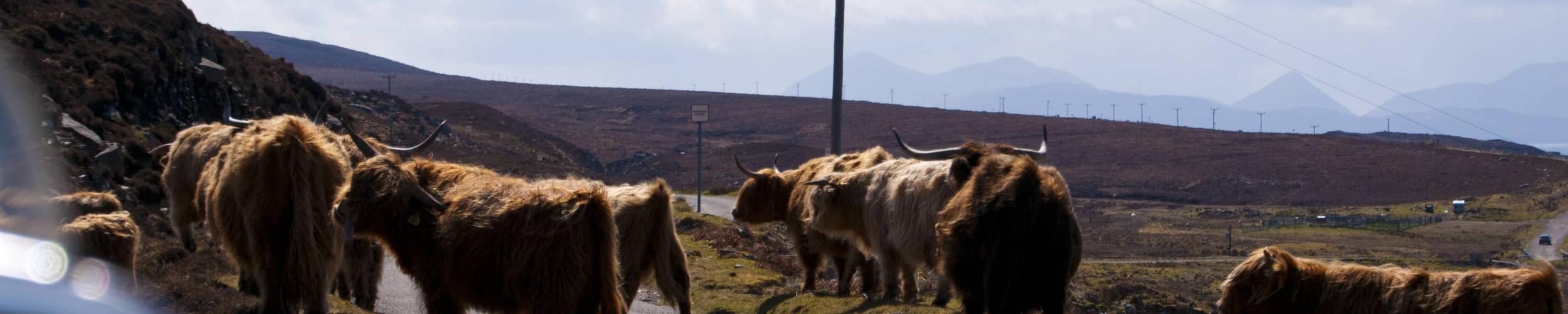 Motorroutes in de Schotse Hooglanden | Motorreis Schotland